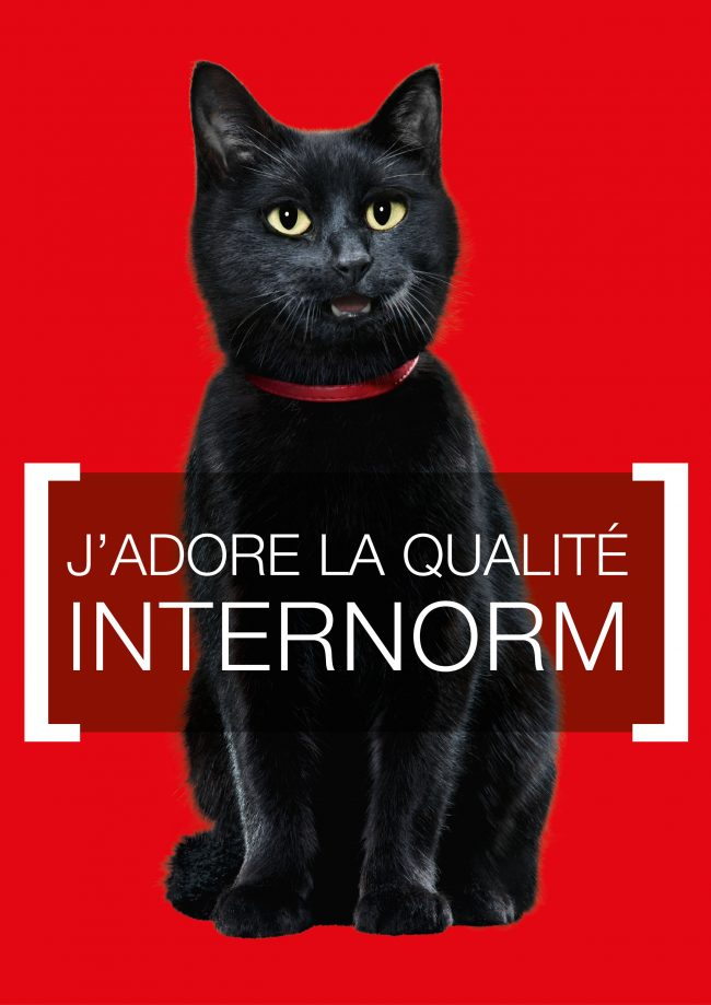 Chat internorm